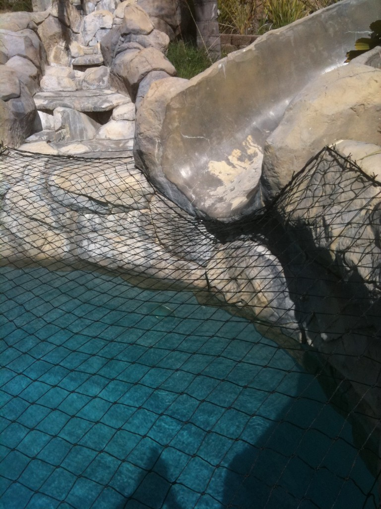 Black Pool net that is safely attached to slide